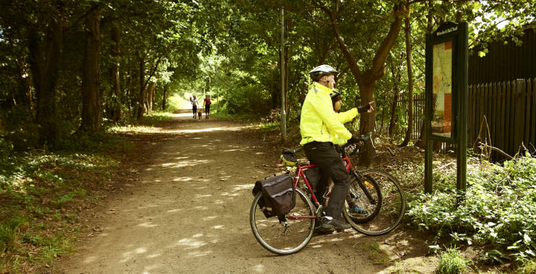 A cyclist looking at a woodland cycle map